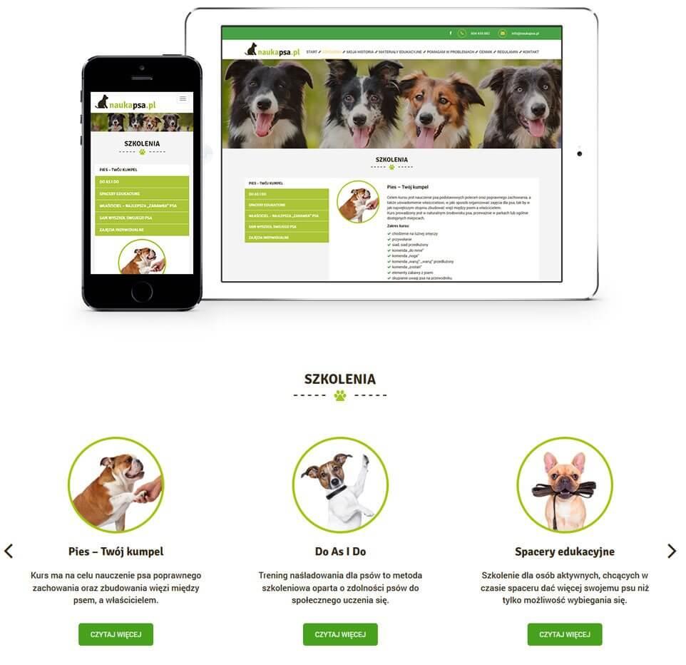 nauka-psa-prezentacja-strony-szkolenia